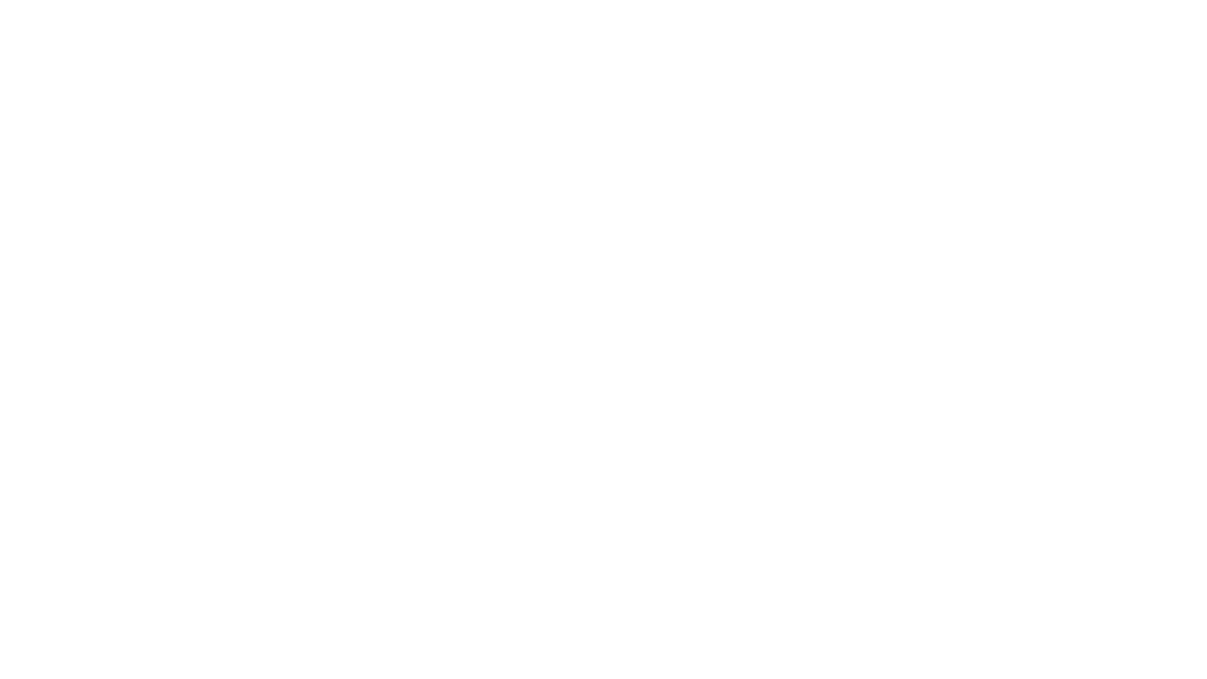 Pulso - Passionate people, healthy organisations